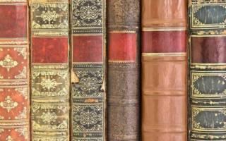 Частная библиотека как бизнес