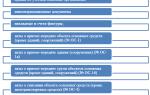 Этапы аудиторской проверки основных средств