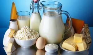 Производство молока как бизнес