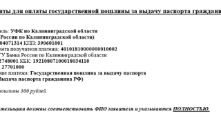 УИН для оплаты госпошлины за паспорт РФ