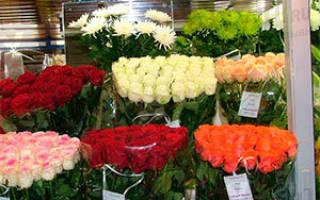 Как развить цветочный бизнес?