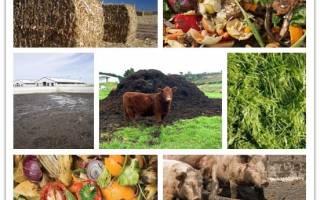 Производство удобрений как бизнес