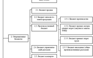 Бюджетирование затрат и доходов консервных предприятий
