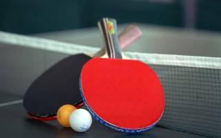 Настольный теннис как бизнес