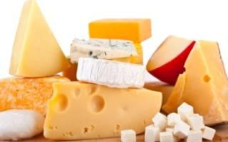 Домашний сыр как бизнес