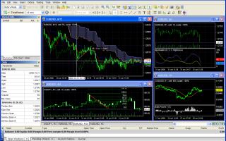 Обзор программы для торговли на рынке форексе