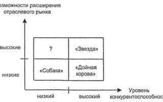 Разработка продуктовой стратегии предприятия