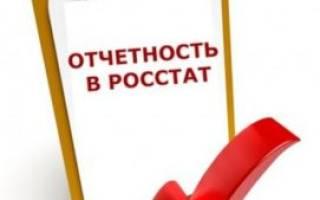 Сдача отчетности в Росстат малыми предприятиями