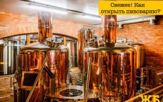 Пивоварение как малый бизнес