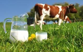 Переработка молока в условиях малых предприятий