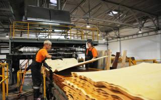 Производство фанеры как бизнес