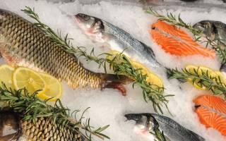 Как открыть рыбный магазин с нуля бизнес