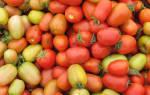 Магазин овощи и фрукты как бизнес