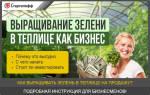 Выращивание базилика как бизнес