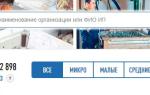 Критерии определения малого предприятия по законодательству РФ